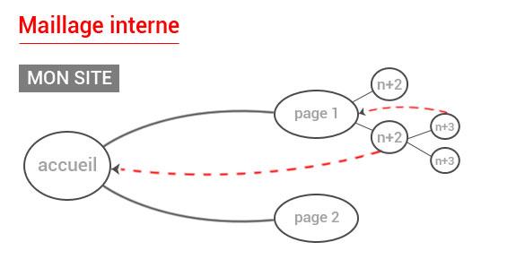 Importance du maillage interne en référencement