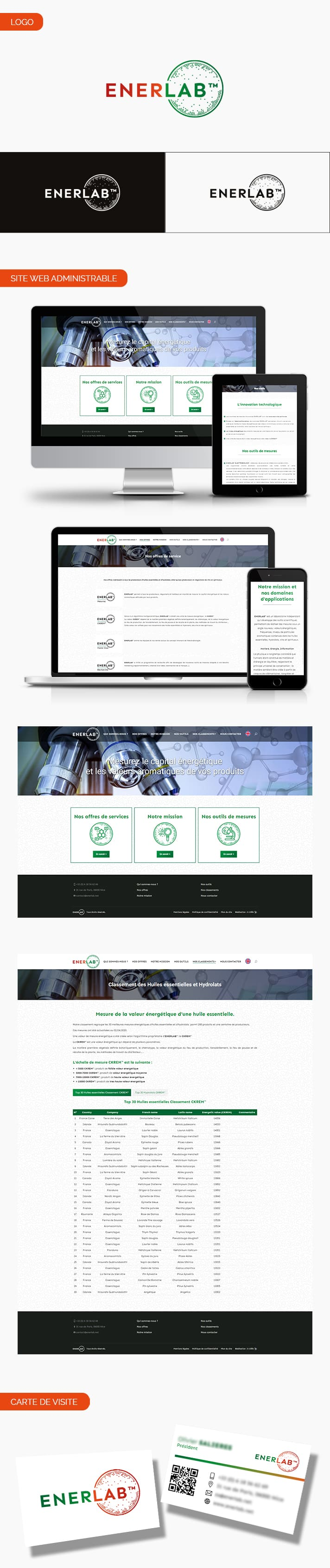 Aperçu logo, carte de visite et site internet de EnerLab
