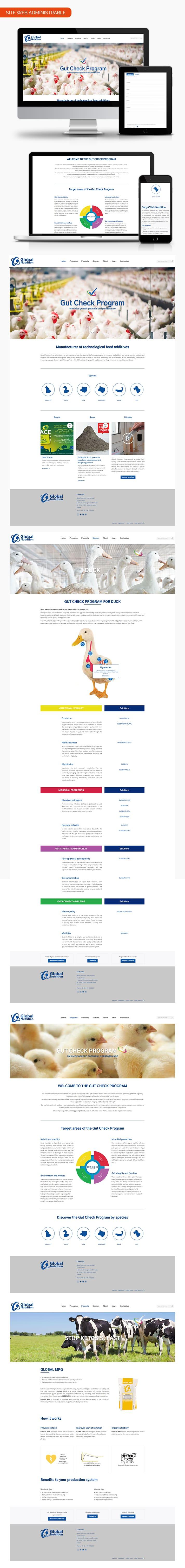 Aperçu pages site internet Global Nutrition International